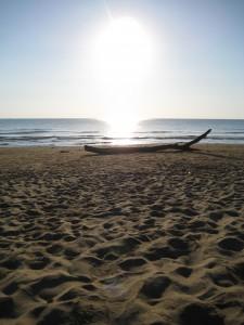 Gargano Strand Holz