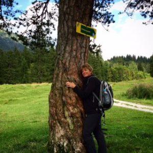 2016088 Baum Aussicht